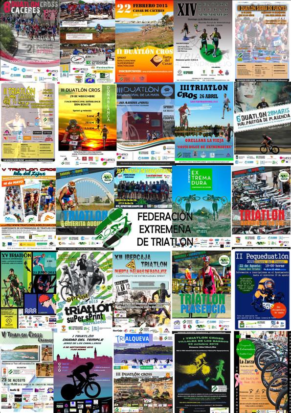 Organización Eventos 2016